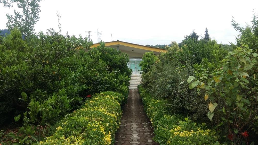 فروش فوری ویلا باغ با سند شش دانگ پای جنگل، نوشهر، نجارده