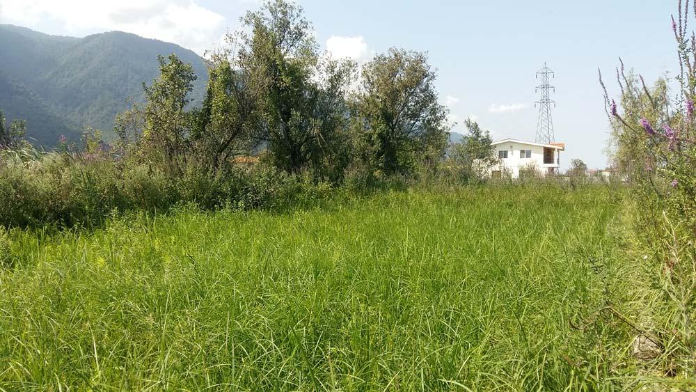 فروش زمین 200 متری با سند شش دانگ در نوشهر، ملکار، داخل مجتمع مناسب جهت سرمایه گذاری