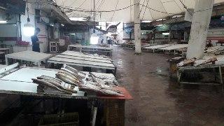 بازار ماهی فروشی شهرستان نوشهر