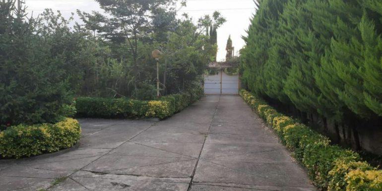 خرید ویلا باغ با سند شش دانگ در شمال (3)