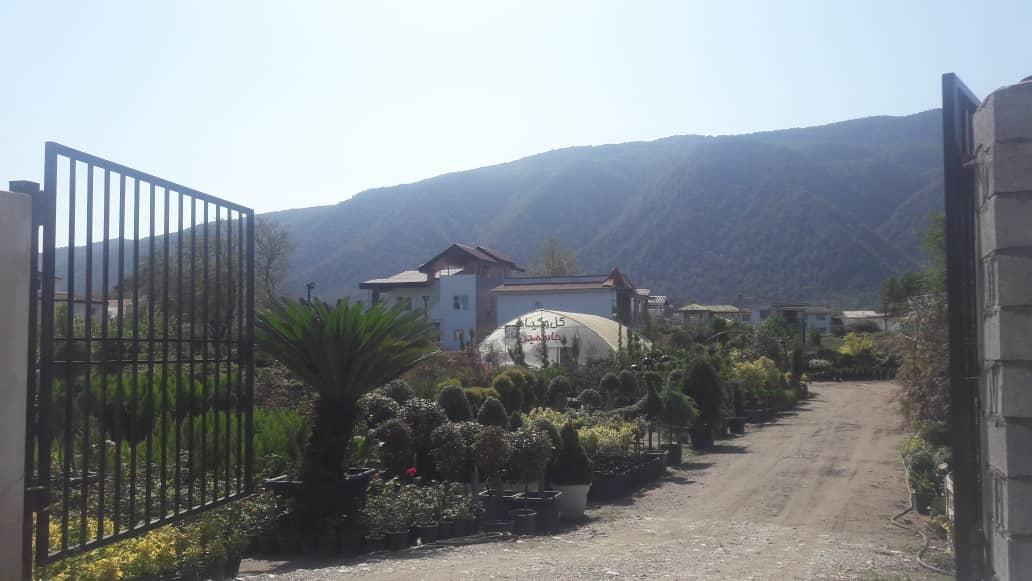 علی آباد عسگرخان سیسنگان