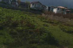 فروش زمین بزرگ در سیسنگان