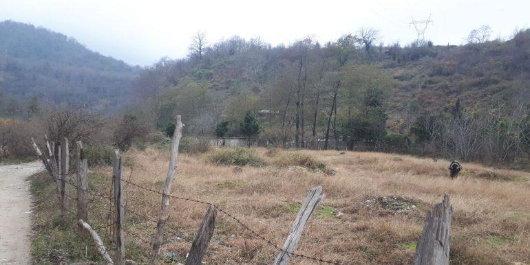 فروش زمین ارزان در خیرود نوشهر (3)