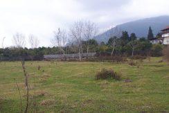 فروش زمین مناسب شهرک سازی در شمال