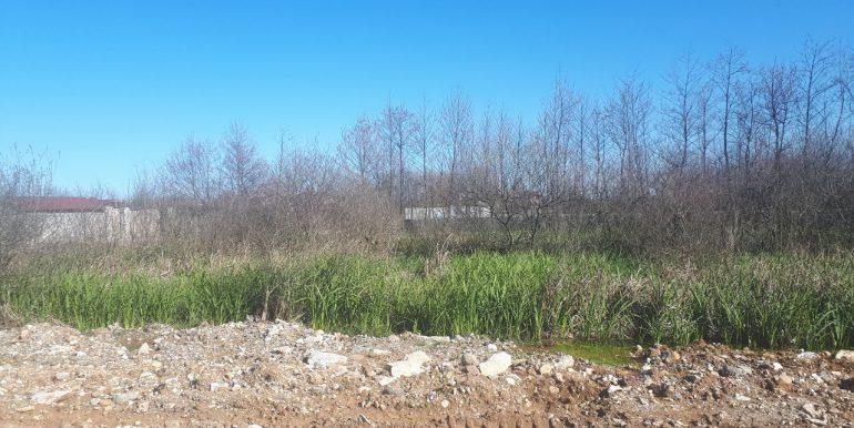 خرید زمین در نوشهر ، انارور (2)