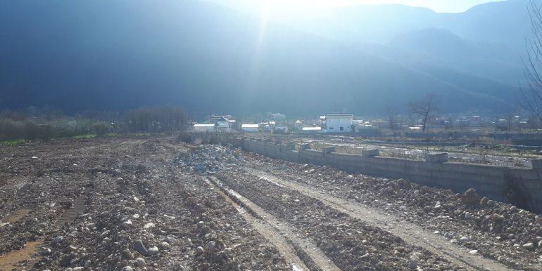 خرید زمین در نوشهر ، انارور (4)