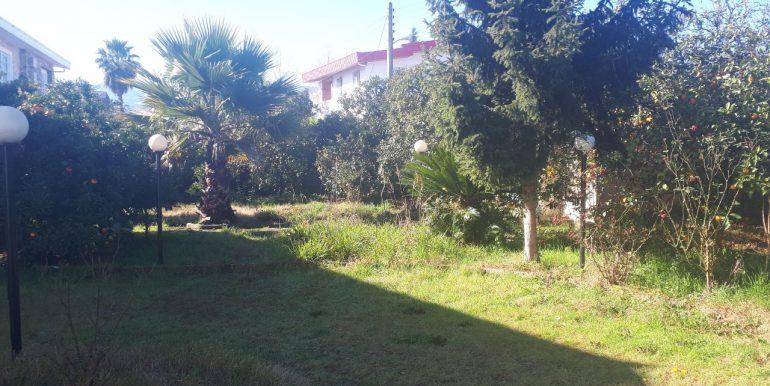 خرید ویلا باغ در لتینگان، نوشهر (3)