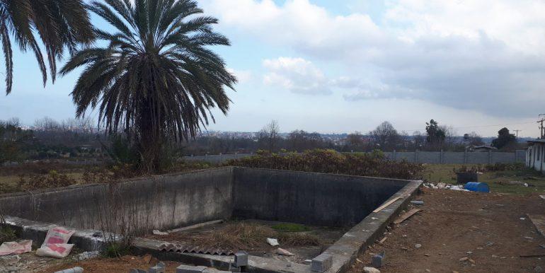 فروش زمین هکتاری با سند تک برگ در نوشهر (3)