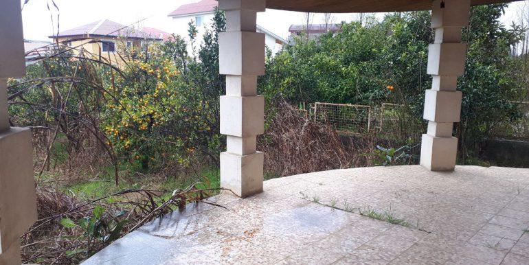 خرید ویلا باغ با سند در شمال (2)