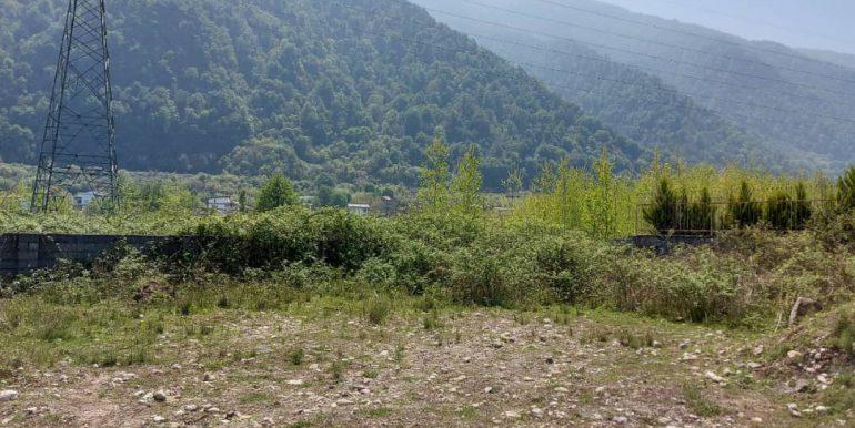 خرید زمین ویو کوه شمال (2)