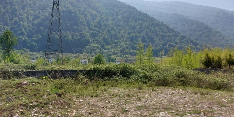 خرید زمین ویو کوه شمال (3)