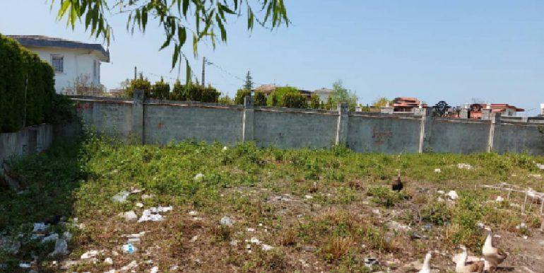 خرید و فروش زمین سند دار نوشهر (1)