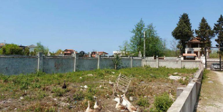 خرید و فروش زمین سند دار نوشهر (3)