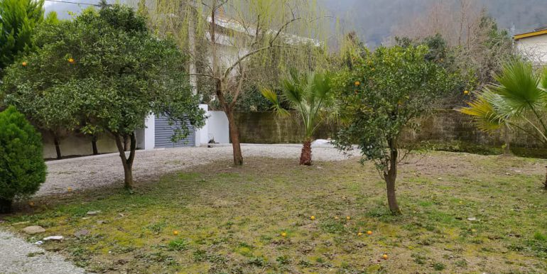 خرید ویلا باغ مازندران (3)